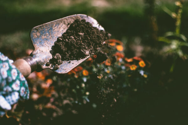 Canva-Person-Digging-on-Soil-Using-Garden-Shovel-scaled